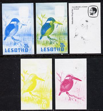 Lesotho 1982 Malachite Kingfisher 25s the set of 5 imperf progressive proofs comprising the 4 individual colours, plus blue & yellow, scarce (as SG 507), stamps on birds   kingfisher