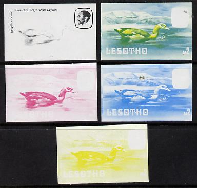 Lesotho 1982 Egyptian Goose M2 the set of 5 imperf progressive proofs comprising the 4 individual colours, plus blue & yellow, scarce (as SG 512) unmounted mint