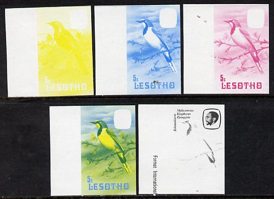 Lesotho 1981 Shrike 5s the set of 5 imperf progressive proofs comprising the 4 individual colours, plus blue & yellow, scarce (as SG 440)