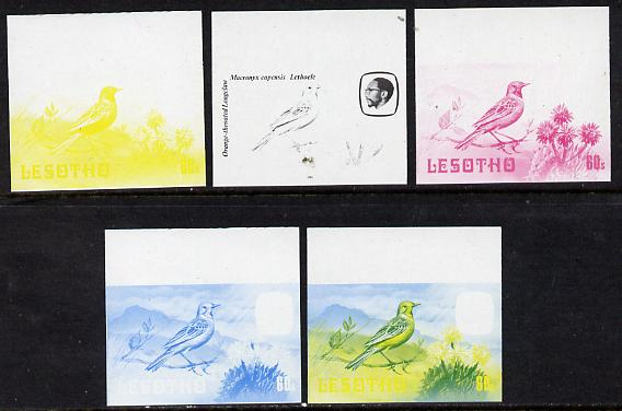 Lesotho 1981 Cape Longclaw 60s the set of 5 imperf progressive proofs comprising the 4 individual colours, plus blue & yellow, scarce (as SG 446)