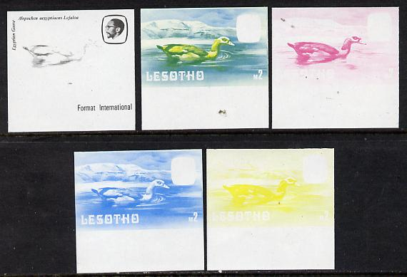 Lesotho 1981 Egyptian Goose M2 the set of 5 imperf progressive proofs comprising the 4 individual colours, plus blue & yellow, scarce (as SG 449) unmounted mint