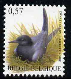 Belgium 2002-09 Birds #5 Black Tern 0.57 Euro unmounted mint, SG 3702