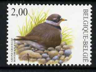 Belgium 2002-09 Birds #5 Ringed Plover 2.00 Euro unmounted mint, SG 3706