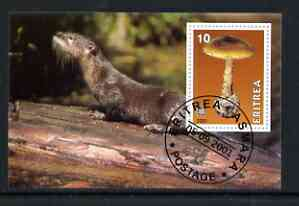 Eritrea 2001 Mushroom & Otter imperf souvenir sheet (with Rotary Logo) fine cto used