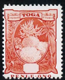 Tonga 1897 Coral (6d) without value  'Maryland' perf 'unused' forgery, as SG 47 - the word Forgery is either handstamped or printed on the back and comes on a presentation card with descriptive notes