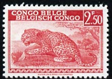 Belgian Congo 1942-43 Leopard 2f50 carmine  'Maryland' perf 'unused' forgery, as SG 263 - the word Forgery is either handstamped or printed on the back and comes on a presentation card with descriptive notes