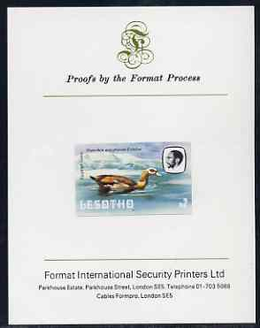 Lesotho 1982 Egyptian Goose M2 imperf proof mounted on Format International proof card (as SG 512)