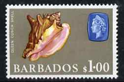 Barbados 1966-69 Queen Conch Shell $1 (wmk sideways) unmounted mint SG 354