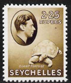 Seychelles 1938 Giant Tortoise 2r25,  'Maryland' perf forgery 'unused' as SG 148 - the word Forgery is either handstamped or printed on the back and comes on a presentation card with descriptive notes