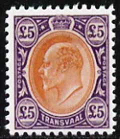 Transvaal 1903 King Edward �5,  'Maryland' perf forgery 'unused', as SG 259 - the word Forgery is either handstamped or printed on the back and comes on a presentation card with descriptive notes