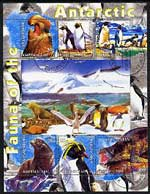 Kyrgyzstan 2004 Fauna of the World - Antarctic perf sheetlet containing 6 values cto used