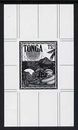 Tonga 1991 Pile of Fruit 2p (from Heilala Week set) B&W photographic proof, scarce thus, as SG 1132