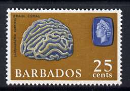 Barbados 1965 Brain Coral 25c (wmk upright) unmounted mint, SG 331