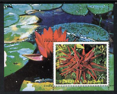 Fujeira 1972 Flowers m/sheet unmounted mint (Mi BL 135A)