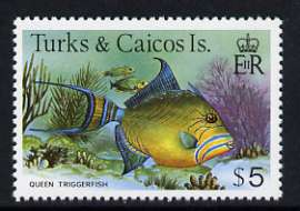 Turks & Caicos Islands 1978-83 Queen Triggerfish $5 unmounted mint, SG 528A