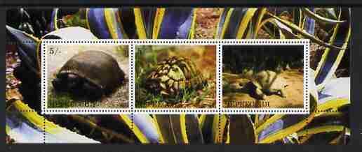 Karachaevo-Cherkesia Republic 2000 Tortoises perf sheetlet (horiz) containing 3 values, unmounted mint