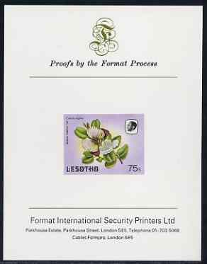 Lesotho 1984 Butterflies Queen Purple Tip 75s imperf proof mounted on Format International proof card as SG 576
