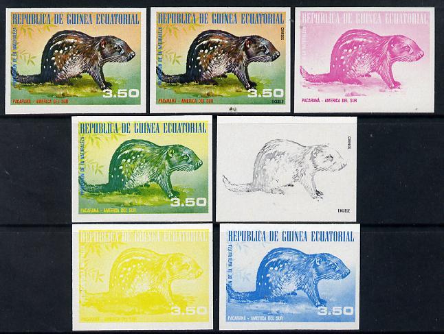 Equatorial Guinea 1977 South American Animals 3e50 (Pacaran\87) set of 7 imperf progressive proofs comprising the 4 individual colours plus 2, 3 and 4-colour composites, a superb and important group unmounted mint (as Mi 1251)