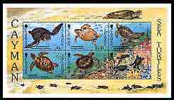 Cayman Islands 1995 Sea Turtles perf m/sheet unmounted mint, SG MS 799