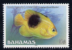 Bahamas 1987 Rock Beauty 5c (1987 imprint date) unmounted mint, SG 791
