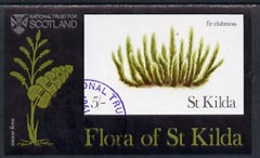 St Kilda 1969 Flowers 5s (Fir Clubmoss) imperf souvenir sheet cto used