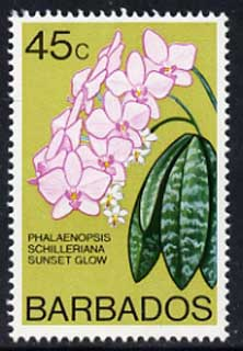Barbados 1975-79 Sunset Glow Orchid 45c unmounted mint SG 519