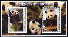 Benin 2002 Pandas perf m/sheet containing 2 values each with Scout Logo, unmounted mint