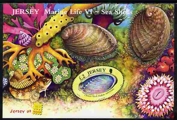 Jersey 2006 Marine Life #6 - Shells perf m/sheet with Jersey at Belgica imprint unmounted mint SG MS 1270a