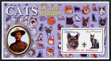 Somalia 2002 Domestic Cats of the World perf s/sheet #05 with Scout Logo & Baden Powell in background, unmounted mint, stamps on cats, stamps on scouts