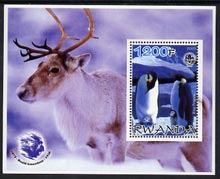 Rwanda 2005 Penguins #01 perf m/sheet with Scout Logo, background shows Reindeer & Roald Amundsen unmounted mint