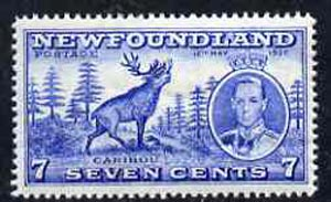 Newfoundland 1937 KG6 Coronation 7c Reindeer line perf 14 unmounted mint, SG 259