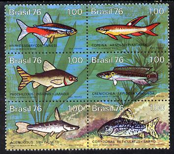 Brazil 1976 Freshwater Fish se-tenat block of 6 unmounted mint SG 1613-18