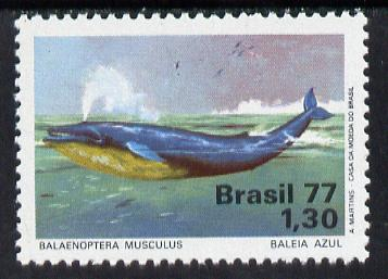 Brazil 1977 Blue Whale unmounted mint, SG 1663*