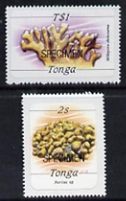 Tonga 1984 Marine Life (Coral) self-adhesive 2s & T$1 opt'd SPECIMEN (as SG 866 & 878) unmounted mint*