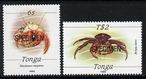 Tonga 1988 Marine Life (Crabs) 6s & T$2 opt'd SPECIMEN unmounted mint, as SG 1003 & 1015