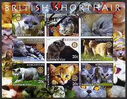 Kyrgyzstan 2004 Domestic Cats - British Shorthair imperf sheetlet containing 9 values each with Rotary logo unmounted mint