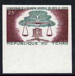 Chad 1963 Human Rights 25f marginal imperf single unmounted mint, as SG106