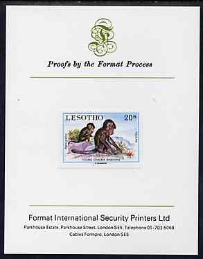 Lesotho 1984 Chacma Baboons 20s (from Baby Animals issue) imperf proof mounted on Format International proof card, as SG 612