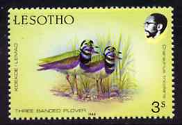 Lesotho 1988 Birds 3s Plover superb colour shift resulting in two birds unmounted mint  SG 792var* (see also #86567)