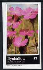 Eynhallow 1982 Flowers #30 imperf souvenir sheet (�1 value) unmounted mint