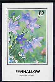 Eynhallow 1982 Flowers #30 imperf deluxe sheet (�2 value) unmounted mint