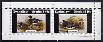 Eynhallow 1981 Ducks #5 perf sheetlet containing set of 2 values unmounted mint