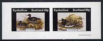 Eynhallow 1981 Ducks #5 imperf sheetlet containing set of 2 values unmounted mint