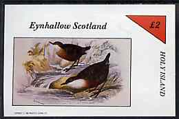 Eynhallow 1982 Birds #42 imperf deluxe sheet (�2 value) unmounted mint