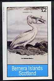 Bernera 1982 Birds #38 (Pelican) imperf deluxe sheet (�2 value) unmounted mint
