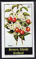Bernera 1982 Flowers #24 imperf deluxe sheet (�2 value) unmounted mint