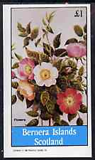Bernera 1982 Flowers #25 (Dogrose) imperf souvenir sheet (�1 value) unmounted mint