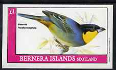 Bernera 1982 Birds #46 imperf souvenir sheet (�1 value) unmounted mint