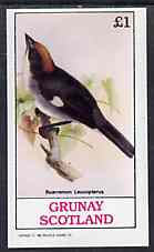 Grunay 1982 Birds #09 (Brush Finch) imperf souvenir sheet (�1 value) unmounted mint