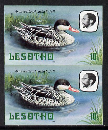 Lesotho 1981 Red Billed Teal 10s def in unmounted mint imperf pair* (SG 443)